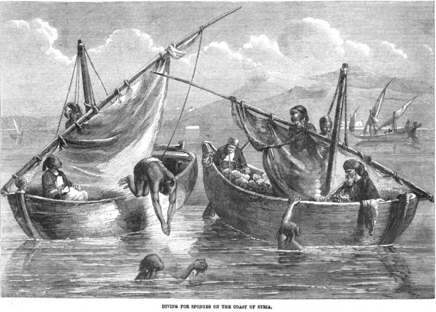 Diving for sponges on the coast of Syria Illustrated London News 1862
