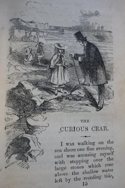 The Curious Crab, Narratives for Youth